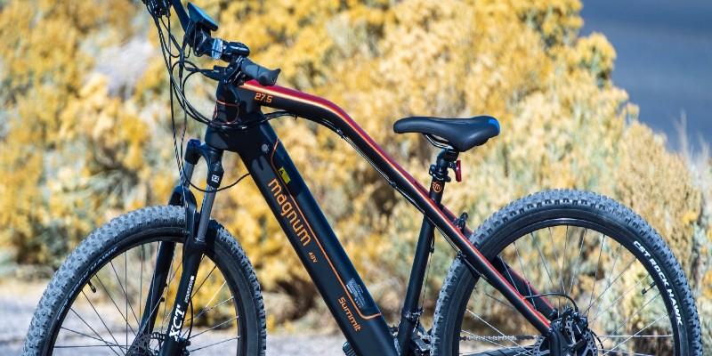 choose-the-electric-bike